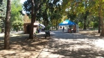 Budculita din parcul lui Stefan unde se poate de cumparat cafeluta